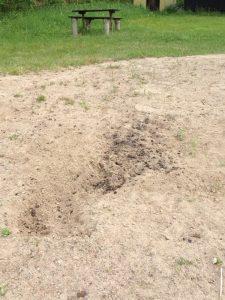 liten brasa på sanden